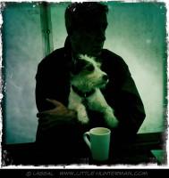 Little Hunterman - Tea Time