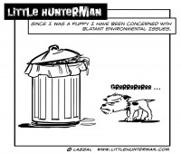 Little Hunterman - Environmental Issues